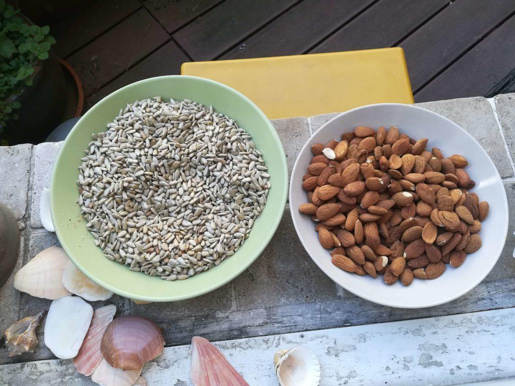Veganes Meal Prep inkl. Nüsse und Samen rösten