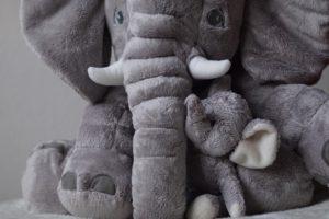 Was gehört zur Baby-Erstausstattung? Viel weniger, als Checklisten suggerieren! Ich zeige dir 31 Dinge, die dein Baby garantiert nicht braucht. Das Foto im jpp-Format stammt von Mylene2401, veröffentlicht auf Pixabay.