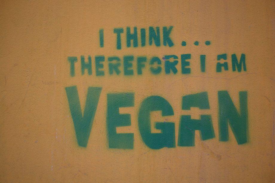 Warum vegan? Meine drei Gründe für die vegane Ernährung
